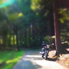 Cedar road & HONDA Phantom200