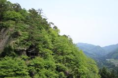 新緑の山寺