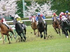 春の福島2006 激走