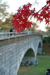 冬への架け橋