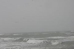 オホーツク海・荒れ