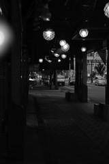 二条市場の夕暮