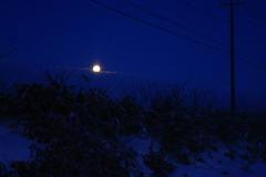 明け前の月