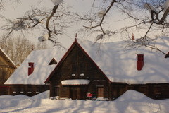 柔らかい陽に雪