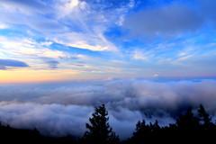 天空の楽園