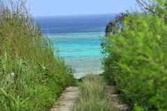エメラルドの海に続く道