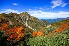紅葉の奥大日岳