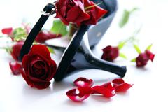 散らばる薔薇