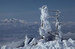 枯れ木に雪像