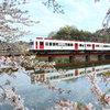 桜といちご列車