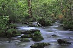 奥入瀬渓流三乱の流れ
