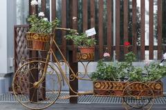フラワー自転車