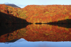 静寂な秋色