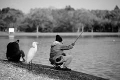 釣れますか?
