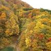 みちのく 秋彩々-8