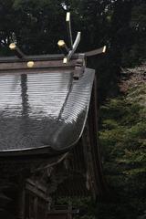 雨と屋根と曲線と