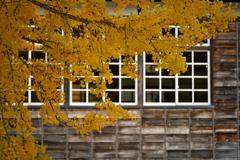 白い窓枠の校舎