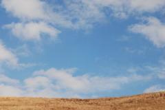 冬の若草山