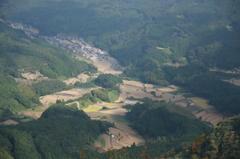 八幡岳から棚田4