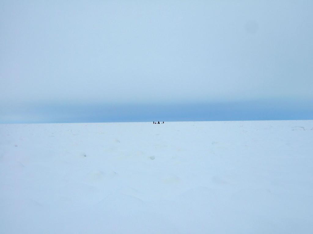氷海の中の人々