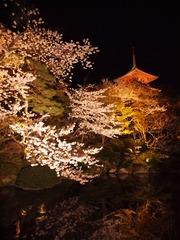 Japan Beautiful