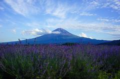 紫香る風の跡