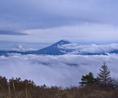 富士山でてこ~い