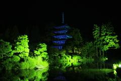 夜の瑠璃光寺