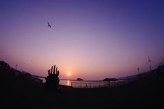 とある港の夕景