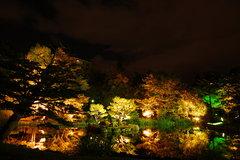 都会の庭園Ⅲ