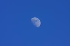 酸素色の月
