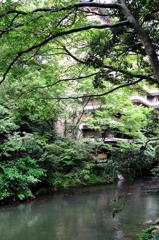 山中温泉 鶴仙渓 川縁の湯
