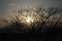 北国の車窓から~冬~