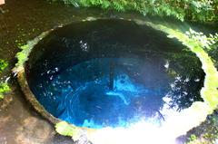 東洋一の湧き水