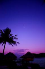 南国の夜更け