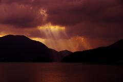 湖上の光。