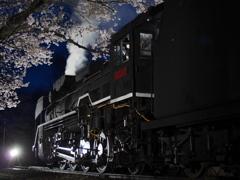 夜桜とD51