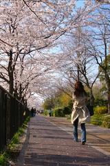 待ち遠しい・・・春