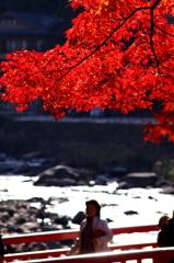 香嵐渓~2010~