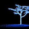 Light Emitting