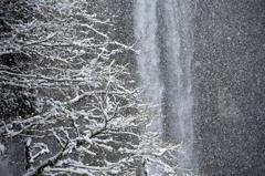 雪の日 8