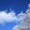 冬晴れ 1