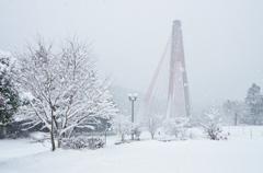 雪の日 5