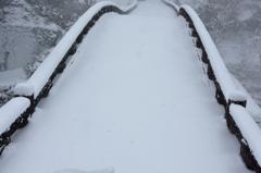 雪の日 1
