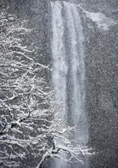 雪の日 9