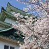 名古屋城にて