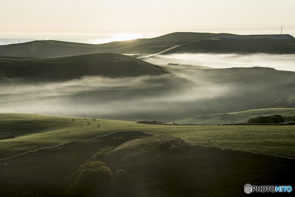 霧の流れる丘