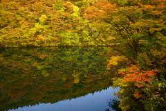 ゆく川の秋