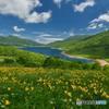 高原の夏模様