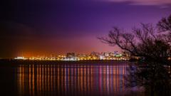夜のグアイバ